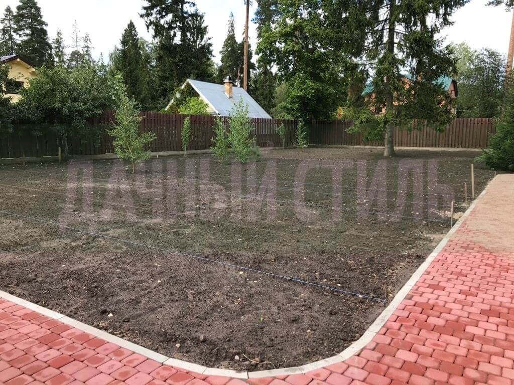 укладка посевного газона сиверский фото 11