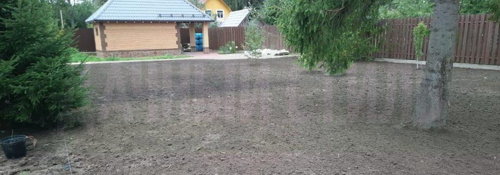 укладка посевного газона сиверский фото 6